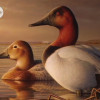 Federal Duck Stamp Competition