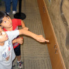 Placerita Nature Center Open House & Family Festival