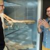 Curiosity Show 6: Los Angeles Underwater, with Dr. Jorge Velez-Juarbe