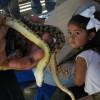 A Day of Fun at Placerita Nature Center