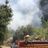 Firefighters Battle Blaze in Placerita Canyon