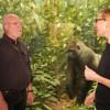 The Curiosity Show Ep. 15 | Diorama Secrets, with Tim Bovard