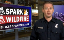 Weekly Fire Situation Report