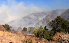 Bee Fire Scorches San Francisquito Canyon