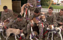 Syria; Fighting Malaria; Dogs Reunited with Returning Vets