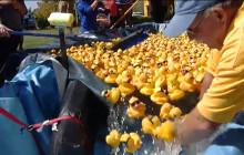 11th Annual Rubber Ducky Regatta