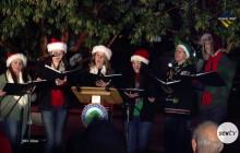 Military Honor Christmas Tree Lighting