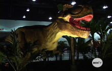 Return of the Dinosaurs! at the LA Convention Center