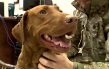 Major Eden, a Commissioned Officer, Relieves Stress at Bagram Airfield