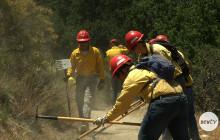 Students Cut Hiking Trails for Summer Job