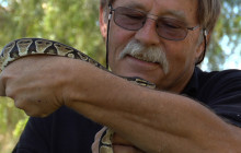 Agua Dulce Snake Guy Slithers to the Rescue