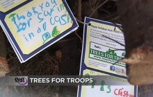 Sequestration Looms; Cyber Threats; Trees for Troops; more