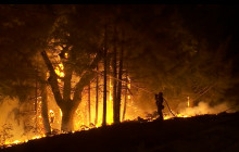 2014 Fire Season in Review, 2015 Outlook