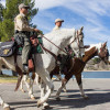 Spotlight Series: Mounted Enforcement Unit Fights Crime From Horseback
