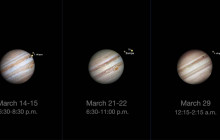 What's Up for March 2016: Moons of Jupiter