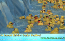 Samuel Dixon Family Health Centers: 14th Annual Rubber Ducky Festival
