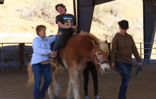 Carousel Ranch to Host 20th Heart of the West Dinner, Auction, Demonstration