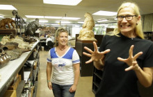 Curiosity Show 5: La Brea Tar Pits & Ice Age L.A.