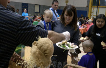 Annual Community Thanksgiving Dinner Brings Out Hundreds