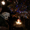 Annual Tree Lighting Provides Recognition for Veterans and Active Service Members