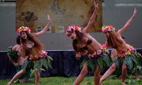 Pacific Islands Come to Life in Newhall