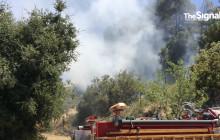 Firefighters Battle Blaze in Placerita Canyon