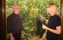 The Curiosity Show Ep. 15   Diorama Secrets, with Tim Bovard