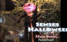 October 2017: Senses Halloween Block Party