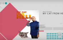 Now Filming in SCV: My Cat From Hell, Unsolved, more