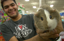 Cloud to Ground Animal Rescue Hosts 'Hot Rods & Dogs' Pet Adoption