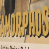 Inside the Gallery: 'Metamorphosis' by Paige Bridges
