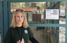 W.S. Hart Park Education Series | QR Code Tours