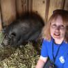 W.S. Hart Park Education Series   Pot-belly Piggy Pen
