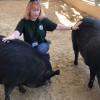 W.S. Hart Park Education Series | Wild Boars