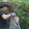Episode 404: L.A. River Cleanup, New Hiking Trail