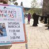 Trailer: Third Annual Youth Arts Showcase