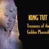 King Tut Exhibit, Dylanfest
