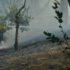 South Fire in Calgrove Boulevard Area Reaches 180 Acres, Evacuation Centers in Place