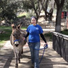 W.S. Hart Park Education Series | Donkey Walk