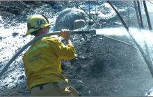 Small Brush Fire Ignites in Newhall, Forward Progress Stopped