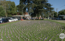 Hart H.S. Students Place 2,977 Americans Flags School's Front Lawn