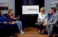 SCV Today Segment: Castaic Animal Shelter