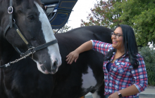Express Employment Professionals Hosts Benefit For Carousel Ranch