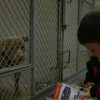KLAWS Celebrates the Holidays At Castaic Animal Shelter with 'Barking for Books'