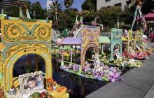 Episode 432: Tree of Life; Dia de los Muertos; Compton Clean Water