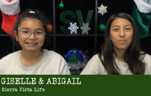 Sierra Vista Life, 11-29-18