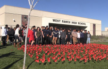 WRHS Students, Teachers Lay Out 1,000 Poppies in Remembrance of WWI, Veterans
