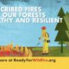 CalFire: Prescribed Fires