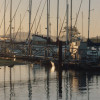 Morro Bay | The Best of California