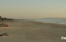 Psimo Beach | The Best of California